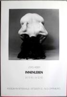 AUSSTELLUNG: JÖRG HIEBER - 1990 - Plakat - Innenleben - Poster - Offenburg