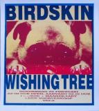 BIRDSKIN - 1996 - Konzertplakat - Concert - Poster - Vera - Groningen